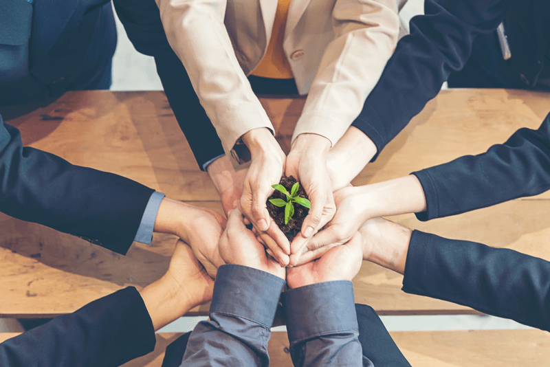 it takes more than just capital to grow in 2019